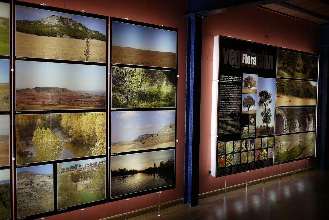 Museo del Cerrato (3)