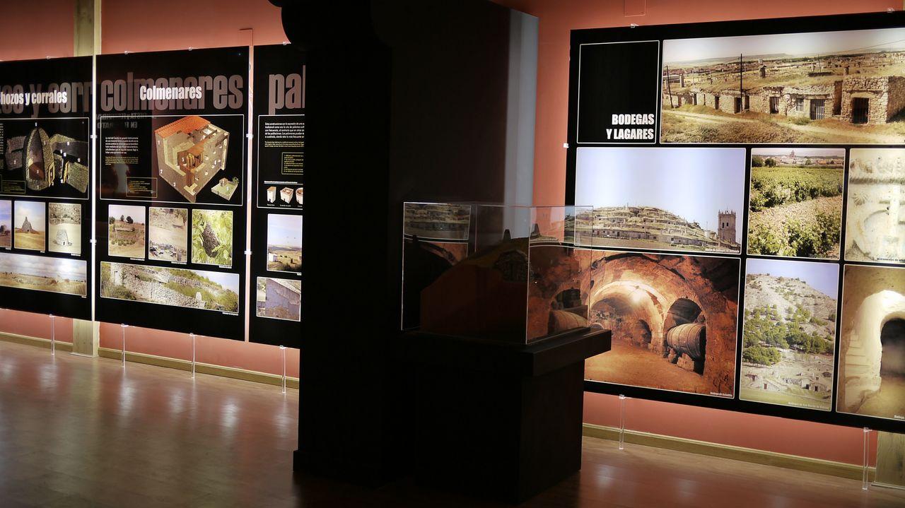Museo del Cerrato (7)