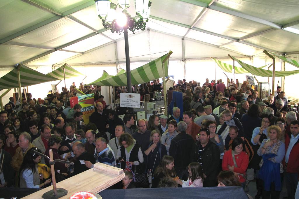 Feria del Queso y Vino (5)