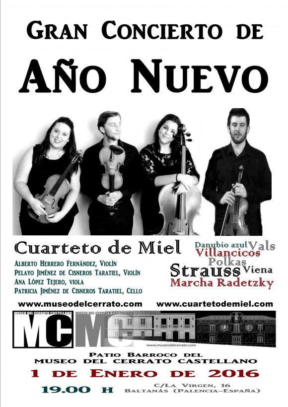 cartel concierto año nuevo cdm (1)